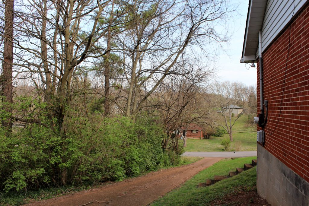 Beautiful view of Nashville countryside from our Airbnb